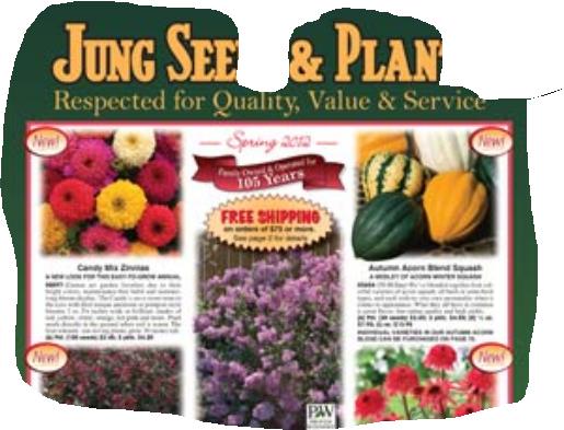 jung seeds  catalog